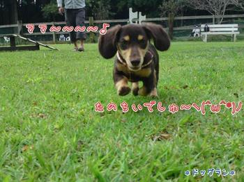 2009-09-19-1.jpg