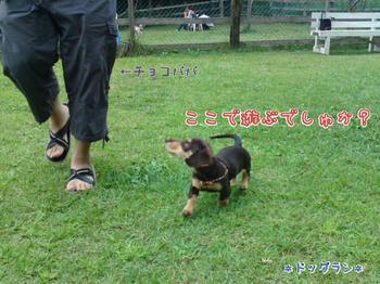 2009-09-19-5.jpg