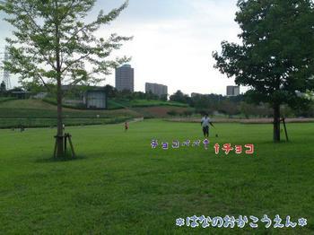 2009-09-21-3.jpg