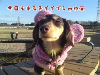 2010-01-16 1.jpg