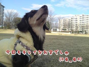 2010-01-22 1.jpg