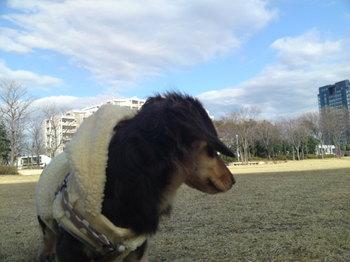 2010-01-22 2.jpg