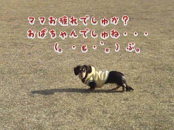 2010-01-22 3.jpg