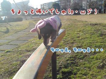 2010-01-30 3.jpg