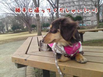 2010-02-10 5.jpg