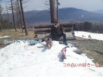 2010-03-22 4.jpg
