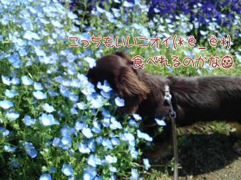 2010-05-14 2.jpg